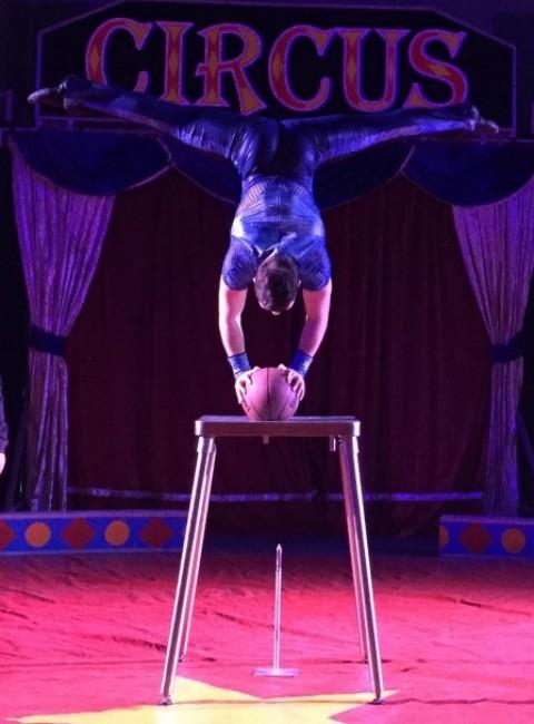 Aristov Circus